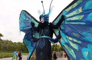 Les Papillons Géants de Terra Botanica (Angers - Maine-et-Loire)