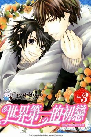 Votre Couple Favorit dans les mangas ?