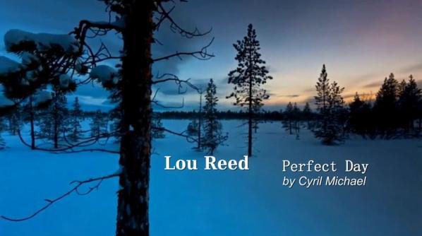 """Le projet """"perfect day"""" en hommage à Lou Reed bientôt Disponible"""