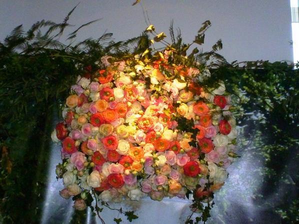 Quelques montages aux couleurs chatoyantes de l automne (Alden Bielsen)