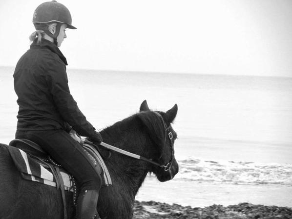L'équitation, bien plus qu'une passion! ♥