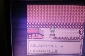 Route 8 Lavanville - Safrania - Celadopole