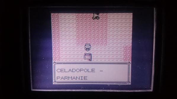 Retour a Celadopole - Piste Cyclable - Parmanie