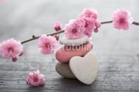image zen