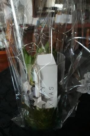 merci au papa noël a Eleane  :)
