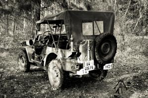 Ma Jeep Willys