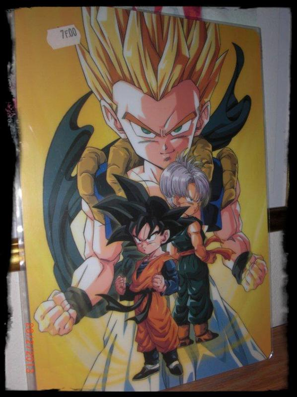 Dragon Ball Z, Carte plastique