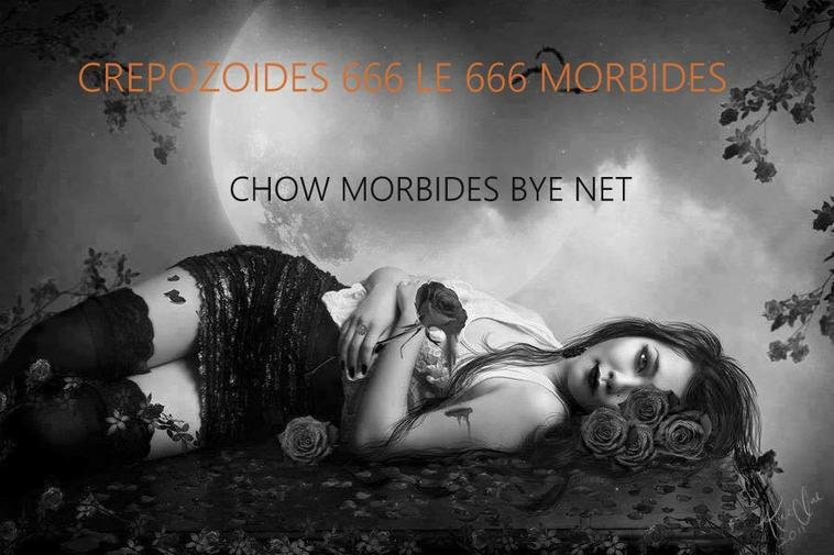666 CREPOZOIDES LE MORBIDES FAN DE GENERAL LEE 666 TOO VIDEO METAL SIMPHONIQUES MELODIES 666 PICS CHOW METAL 666