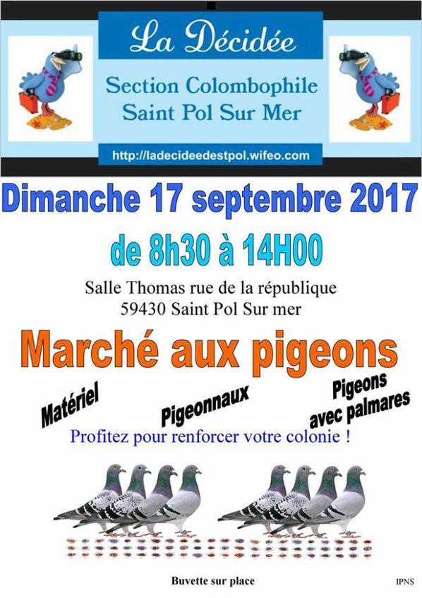 marche aux pigeons