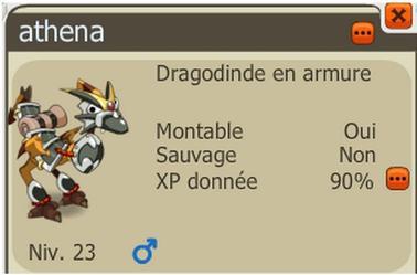 DD armure acquis !