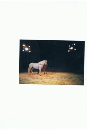 La cavalerie chez Pinder(épisode 2/3...).