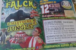 """""""Reportage numėro 2 Lucrio 2018:""""Le cirque Falck aux Sables d'olonne""""."""