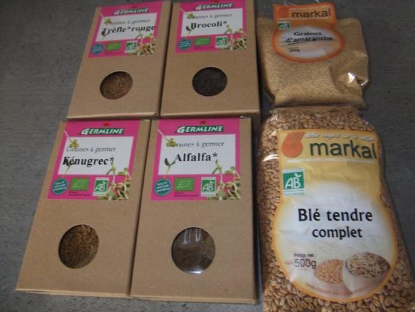 voici les graines que je fait germée