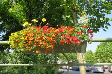 Mégots VS Fleurs par Béa pour lorraineblog
