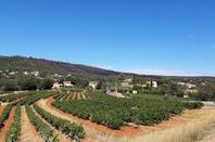 petite balade en Provence, près de chez nous