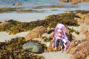 Sur la plage (2)