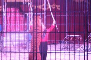 magnifique spectacle du Cirque La piste aux étoiles