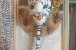 Dans la collection le tour du monde : L'inde première partie Le tableau 3D Tigre blanc