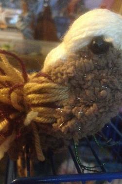 Les moineaux de laine 2