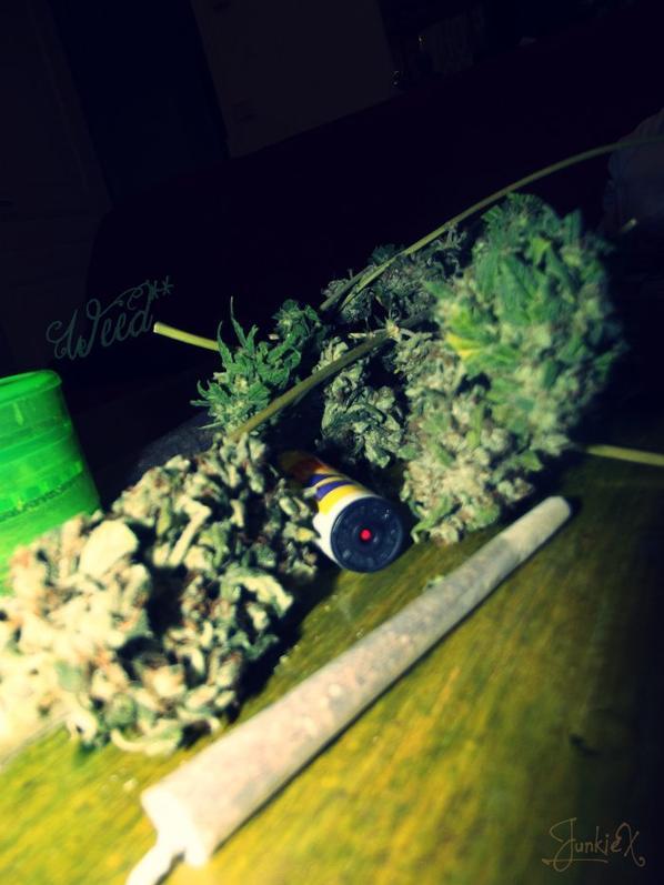WEED WEED WEED