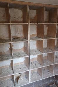 Nouveaux casiers pour les veuves.
