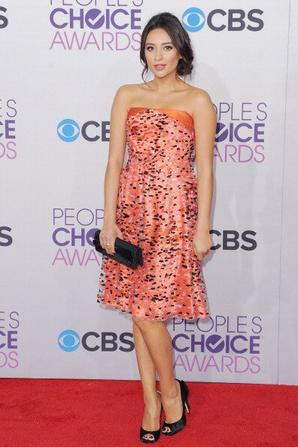 People Choice Awards (2013)