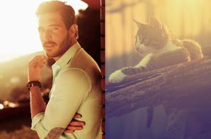 Des hommes et des chatons !!!