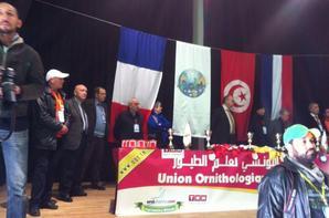 DÉROULEMENT DU CHAMPIONNAT NATIONAL  2014