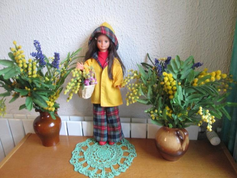 c'est bientôt le carnaval, vive le mimosa.........