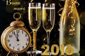 Bonne Annee 2016 A Tous
