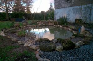 le bassin bientot fini ... ;)
