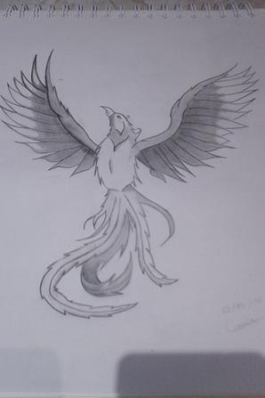 dessin de phoenix
