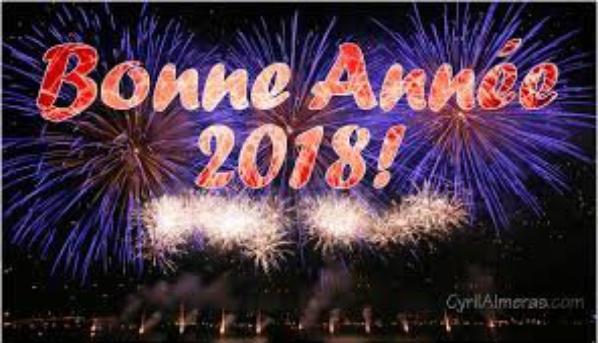 bonne année a toutes mes amies et ami