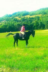 Pardi le cheval de ma vie *-*♡