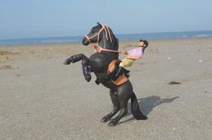 shooting du 08/03/15                      La plage !!!!!!!!!!!!!!! 1/2