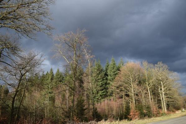 Photo prise pendant la tempête de la semaine.