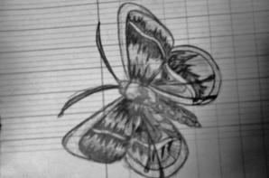 quelques dessins pour vous, je vous mettrais la suite plus tard ;)