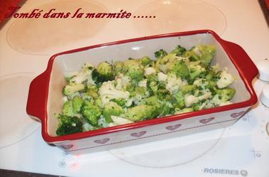 """Trio de fleurettes  """"chou-fleurs,brocolis,choux romanesco """"aux oeufs durs sauce béchamel"""
