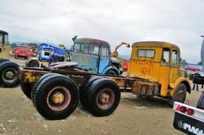 Handicamino Trucks