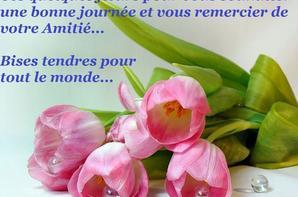 bonjour mes amis et bonne journée