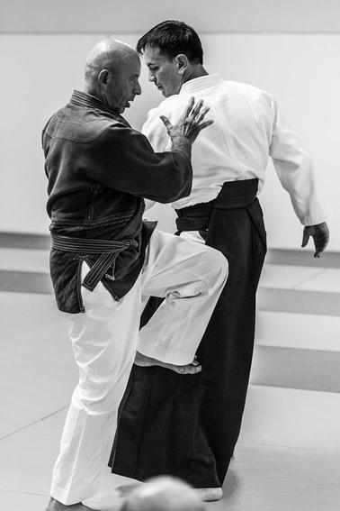 Monaco, Juil. 2017  d'autres images sur: https://www.facebook.com/asmonaco.aikido/photos/pcb.650513731813531/650527525145485/?type=3&theater