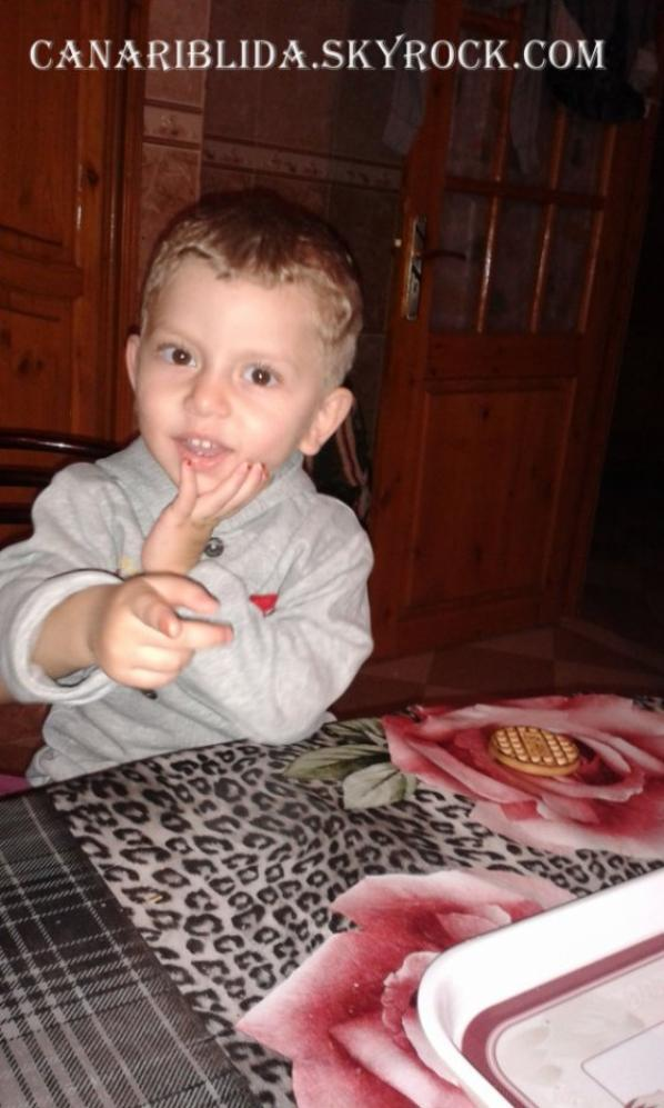 Jeune satiné mosaique jaune  de 3 ans