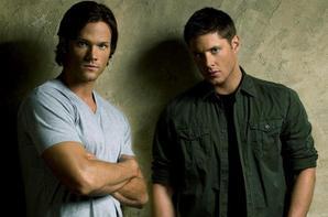 Des frères Salvatore, Petrelli, Scott, Winshester et Micheson, quelle relation fraternelle préferiez-vous ?