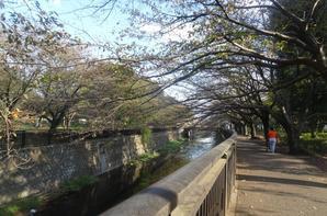 Soshigaya Park [28/10/2015]