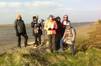 Week-end Ornithologique dans la baie des Veys (Manche)