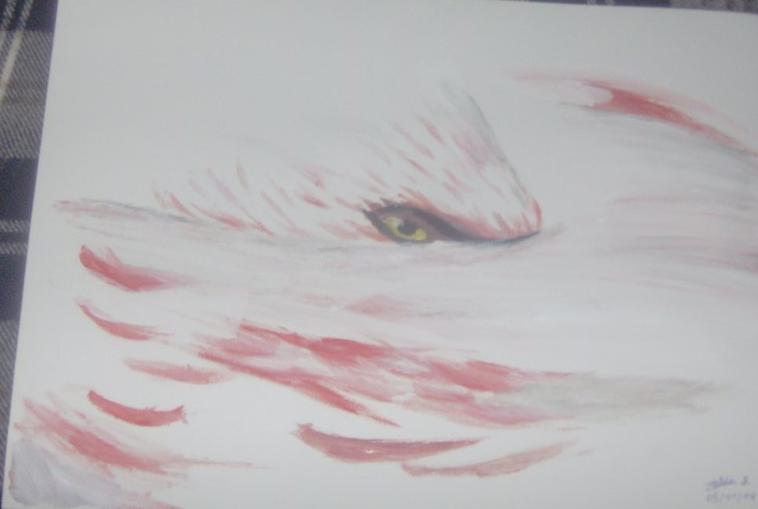 flamen rose en peinture