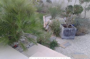 De nouvelles photos du jardin de Martina Stoessel