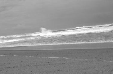 "Thème:""Rêverie en bord de mer""."