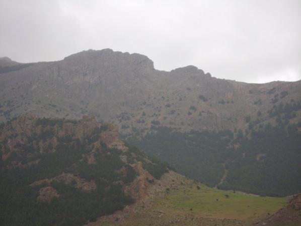 Les monts des aurés