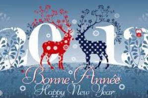 bonne et heureuse année 2013^^